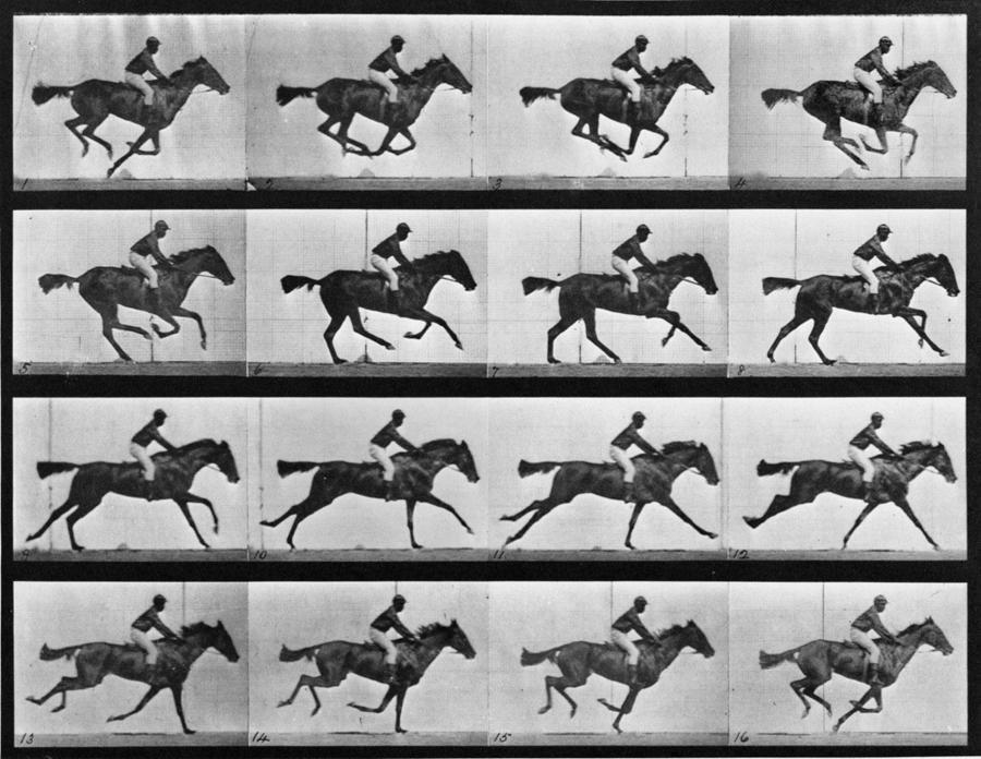 Eadweard Muybridge's 1878 The Horse in Motion
